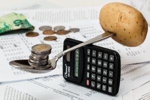 Penggunaan Pendapatan Individu